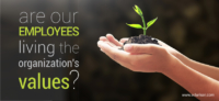 Are our employees living the organization's values?